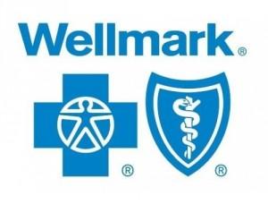 Wellmark-500-x-380-300x228